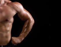 Торс сильного человека Стоковые Фото