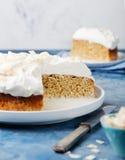 3 торта молока, leches tres испечет с кокосом Традиционный десерт Латинской Америки Стоковые Изображения RF