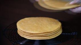 Торты для собрания торта меда сток-видео