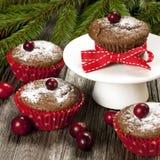 Торты рождества мини с ягодами Стоковое фото RF