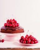 Торт вишни шоколада Селективный фокус Стоковое фото RF