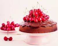 Торт вишни шоколада Селективный фокус Стоковая Фотография