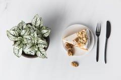 Торт грецкого ореха на плите с вилкой и ножом Стоковые Изображения RF
