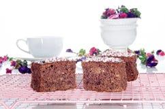 Торт грецкого ореха шоколада на охладительной решетке Стоковые Изображения