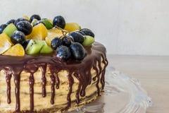 Торт губки меда с плодоовощами и пятнами шоколада стоковые фотографии rf