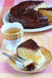 Торт губки с поливой сливк и шоколада лимона Стоковые Фото