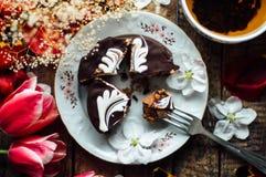 Торт губки шоколада свеже испеченное типа пирожн острословие торта губки Стоковое фото RF