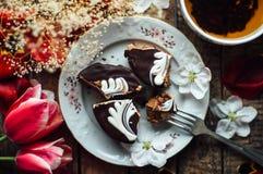 Торт губки шоколада свеже испеченное типа пирожн острословие торта губки Стоковое Изображение RF