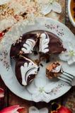 Торт губки шоколада свеже испеченное типа пирожн острословие торта губки Стоковые Фото