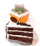 Торт и кактус слоя обломока шоколада бара молока на цветочном горшке Стоковое фото RF