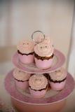 Торт и печенья Стоковая Фотография