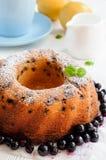 Торт и смородины изюминки Стоковое фото RF