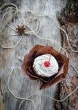 Торт крупного плана с плавленым сыром вишни и на постаретой древесине Стоковые Фото
