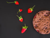 Торт клубники шоколада с свежими клубниками на черноте Стоковое Изображение RF