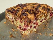 Торт клюквы Стоковое Фото