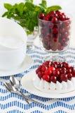 Торт меренги украшенный с клюквами и мятой Стекло замороженных клюкв Стоковое Фото