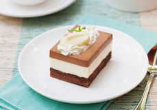 Торт мусса шоколада 3 на белой плите Стоковые Изображения