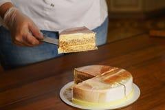 Торт мусса Esterhazy варить стоковые фотографии rf