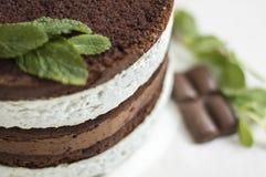 торт Мят-шоколада Стоковые Изображения