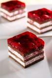 торт печенья Стоковые Фото