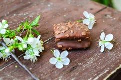 Торт пирожного гайки шоколада Стоковое Изображение