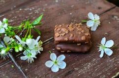 Торт пирожного гайки шоколада Стоковая Фотография