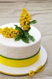 Торт покрытый с mastic Стоковые Фотографии RF