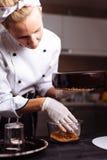 Торт предусматриванный в шоколаде Полива зеркала Стоковая Фотография