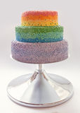 Торт радуги Стоковая Фотография
