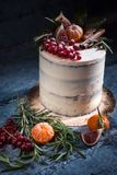 Торт рождества с плодоовощами и ягодами Стоковое Изображение RF