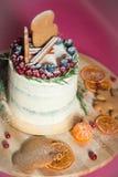 Торт рождества с пряником Стоковое Изображение
