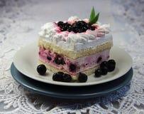 Торт с белой сливк и одичалыми ягодами Стоковые Фотографии RF