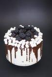 Торт с ежевиками Стоковые Изображения RF