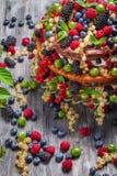 Торт сделанный одичалых ягод Стоковые Изображения