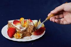 Торт с клубниками и физалисом Стоковое Изображение RF