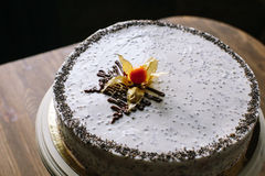 Торт с маковыми семененами Стоковые Фото