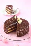Торт слоя шоколада с меренгой и творогом Passionfruit Стоковые Изображения RF