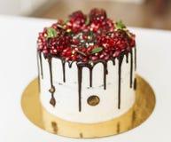 Торт с сливк сыра и красным гранатовым деревом Стоковое фото RF