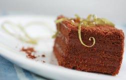 Торт шоколада стоковая фотография