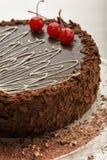 Торт шоколада на плите Стоковое Изображение