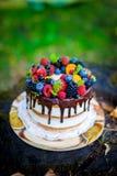 Торт ягоды лета Стоковое Изображение RF