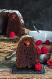 Торт bundt шоколада и поленики Стоковая Фотография