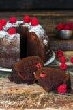 Торт bundt шоколада и поленики Стоковые Фото