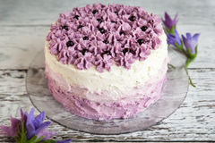 Торт Ombre фиолетовый с черными смородинами стоковое изображение rf