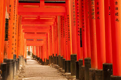 Торусы на виске Fushimi Inari-taisha, Японии Стоковое фото RF