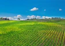 Тоскана, итальянский сельский ландшафт стоковое фото