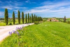 Тоскана на весне Стоковая Фотография RF