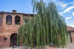 Тоскана: ферма с деревом вербы Стоковые Изображения RF