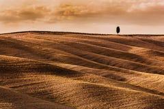 Тоскана fields ландшафт осени, Италия сезон монтажа хлебоуборки фантазии Стоковое фото RF