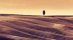 Тоскана fields ландшафт осени, панорама, Италия сезон монтажа хлебоуборки фантазии Стоковое Фото